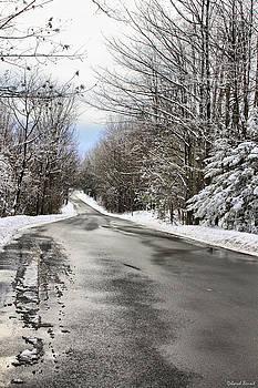Deborah Benoit - Private Country Road