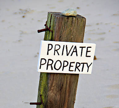 Private Property by Michael Oleksiw