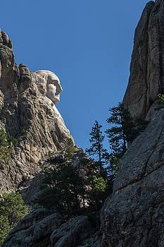 Profile of George Washington by Penny Meyers