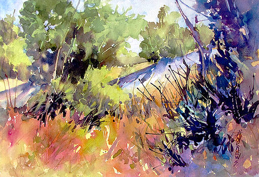 Provence Colors by Rae Andrews
