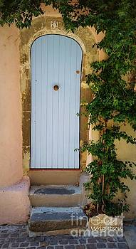 Provence Door 23 by Lainie Wrightson