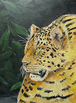 Prowling by Connie Rowsell