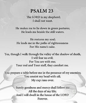 Psalm 23 by Trilby Cole
