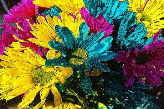 Cindy Boyd - Psychedelic Spring daisies