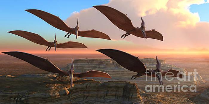 Corey Ford - Pteranodon