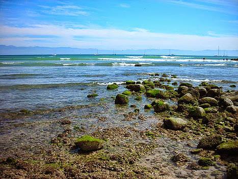 Puerto Vallarta  Beach  by Renee McDaniel