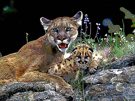 Puma and Cub by Charles Shoup