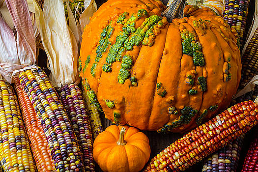 Pumpkins And Indian Corn Harvest by Garry Gay
