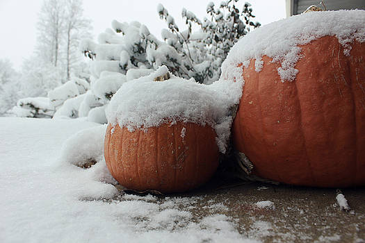 Pumpkins covered with snow by Terry and Brittany Sprinkle