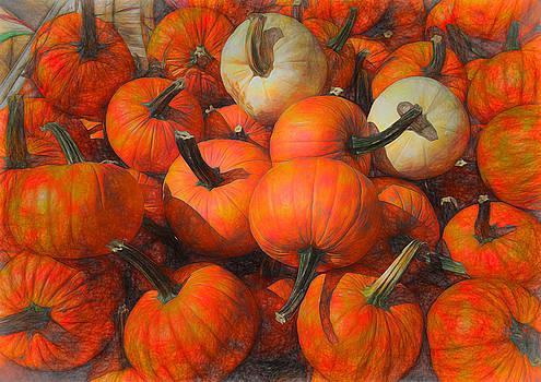 Pumpkins in a Fall pile by Cindy Boyd