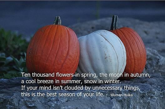 Pumpkins In Autumn by Lisa DiFruscio
