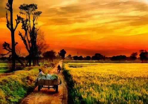 Punjab by Ripandeep Singh