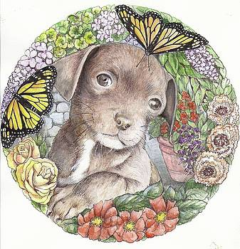 Puppy and butterfly by Morgan Fitzsimons