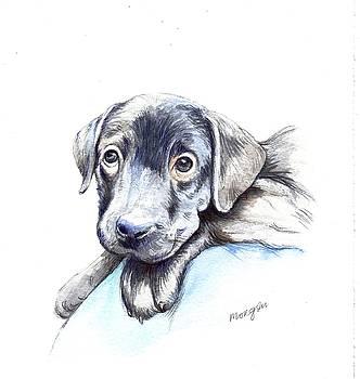Puppy by Morgan Fitzsimons