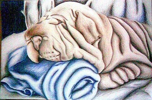 Puppy Nap by Ashley Warbritton