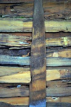 Pure Planks by Tammy  Shiver