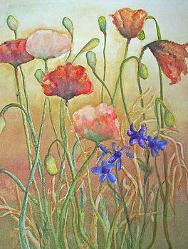 Purely Poppies by Sandy Collier