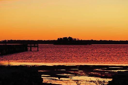 Purple Bay by Peter  McIntosh