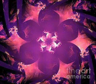 Purple Blush Floral by Kim Sy Ok