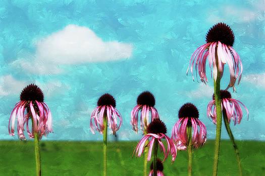 Purple Coneflowers by Vicki McLead