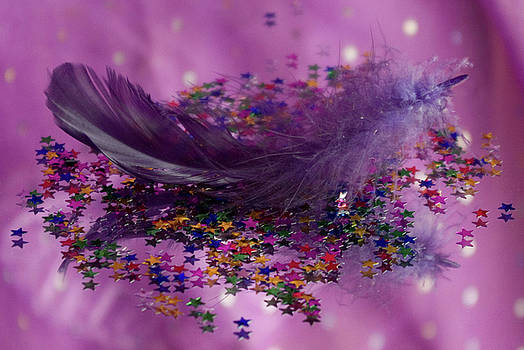 Purple Fairy Feather by Pixie Copley