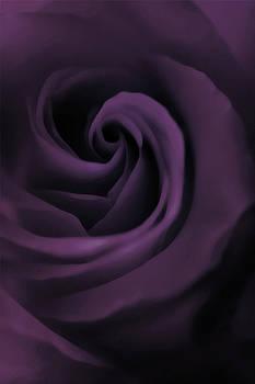 Purple Fantasy by The Art Of Marilyn Ridoutt-Greene