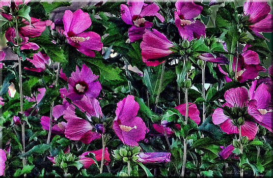 Purple Flowers by Mikki Cucuzzo