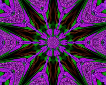 Purple Haze by Marilyn Peterson