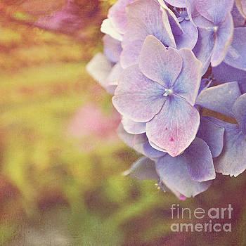Purple Hydrangea by Lyn Randle