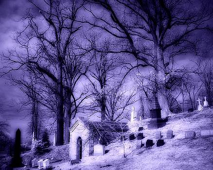Purple Infrared by Gothicrow Images