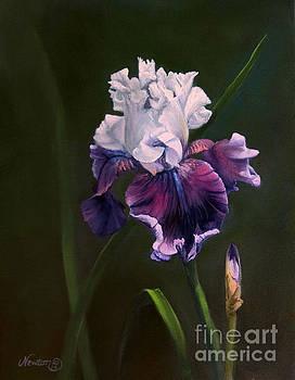 Purple Iris by Jeanne Newton Schoborg
