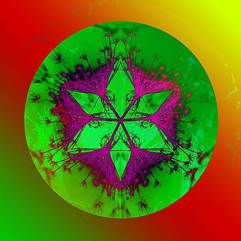 Purple pentagram by Brigita Tekavcic