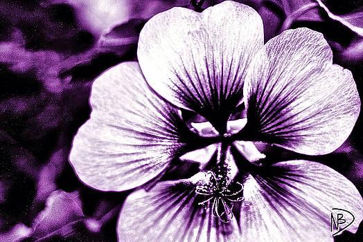 Purple Power by Nicole Dumond-Barry