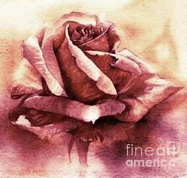 Purple Rose by Sandra Phryce-Jones