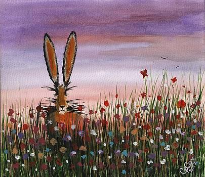 Purple sunset hare by Chris Cox