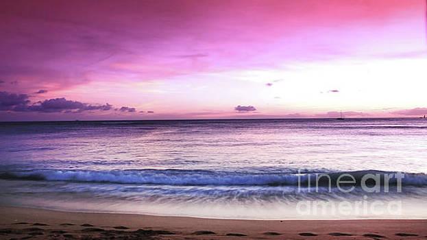 Purple Sunset by Kristine Merc
