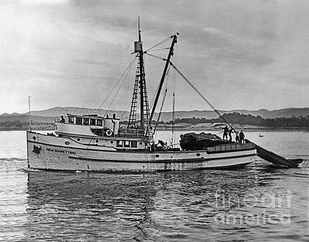 California Views Mr Pat Hathaway Archives - Purse Seiner New Marettimo going out on Monterey Bay 1940