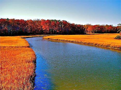 Queen's Creek by E Robert Dee