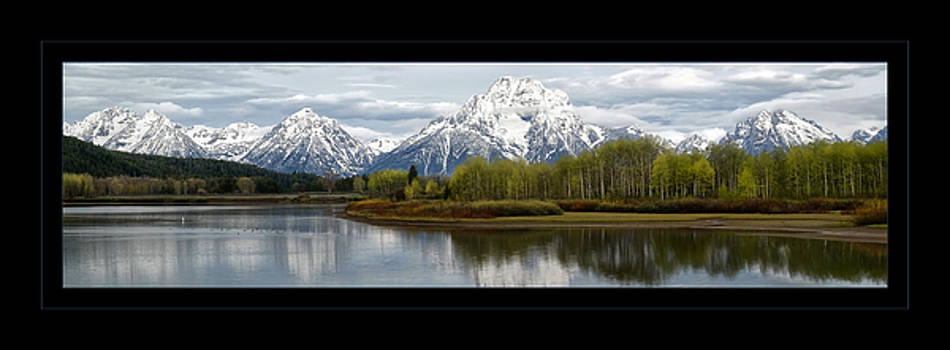 Quiet morning at Oxbow Bend by Jaki Miller