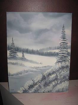 Quiet Winter Wilderness by Jim Carreau
