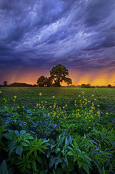 Quietly Drifting By by Phil Koch