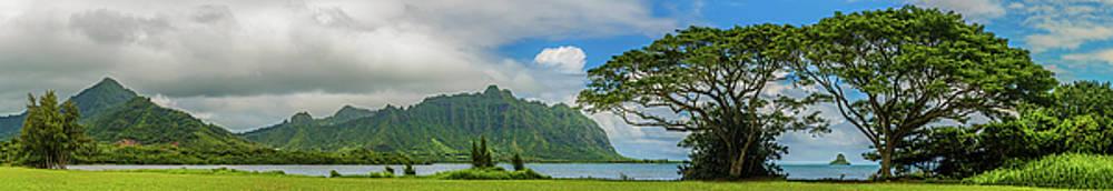 Quintessential Hawaii 2 by Leigh Anne Meeks