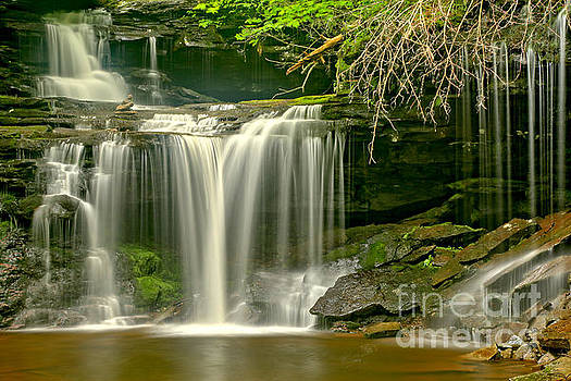Adam Jewell - R B Ricketts Streaming Falls