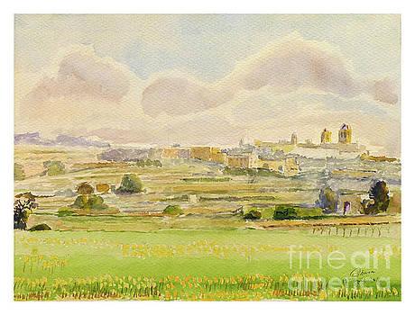 Rabat/Mdina landscape by Godwin Cassar