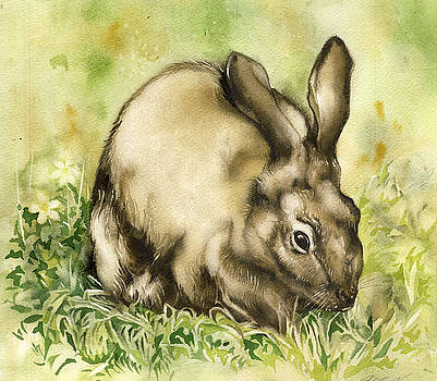 Alfred Ng - rabbit in spring time
