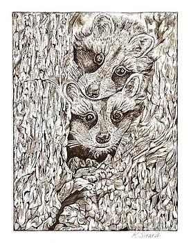 Racoons in Tree by Karen Sirard