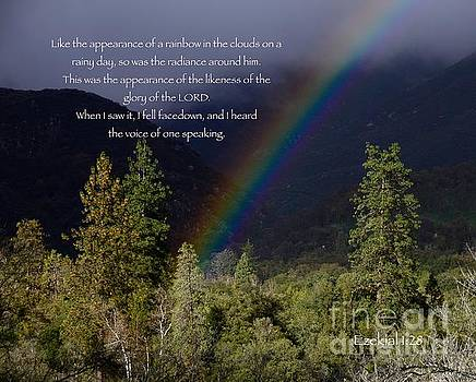 Radiance of the Rainbow by Debby Pueschel
