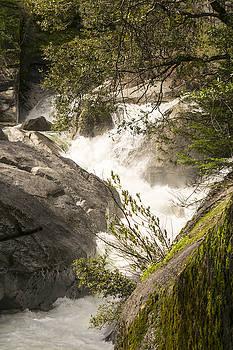 Raging Rock Creek by Frank Wilson