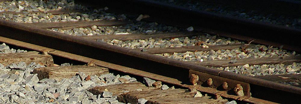 Linda Knorr Shafer - Rail