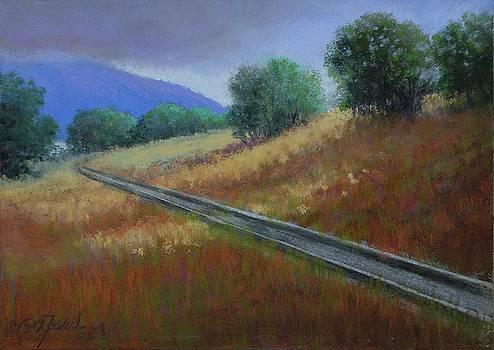 Railroad Tracks around Blue Mountain by Paula Ann Ford